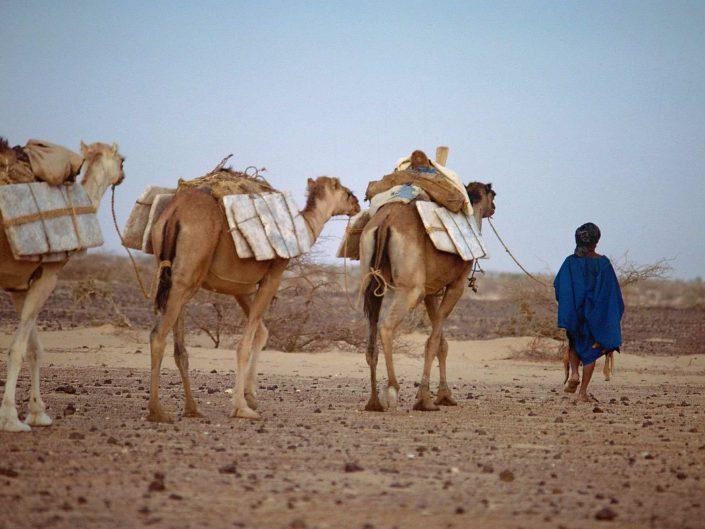 Mauritanie - Mali - Niger - 1983